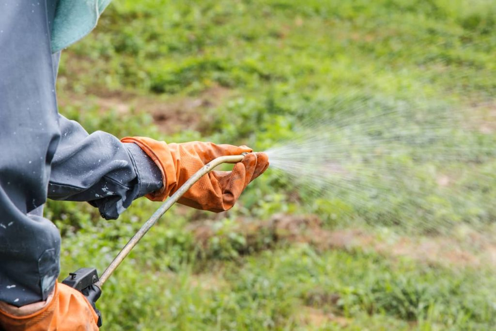 Does Roundup Cause Breast Cancer?